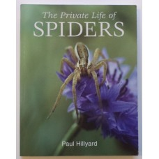 Private Life of Spiders, by Paul Hilliard